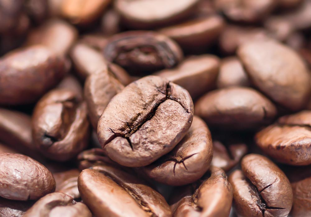 Coffee is a brewed drink prepared from roasted coffee beans,  				which are the seeds of berries from the Coffea plant. The genus Coffea is  				native to tropical Africa, and Madagascar, the Comoros, Mauritius and Réunion  				in the Indian Ocean.